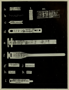 benson-material-culture-bird-banding-image-1