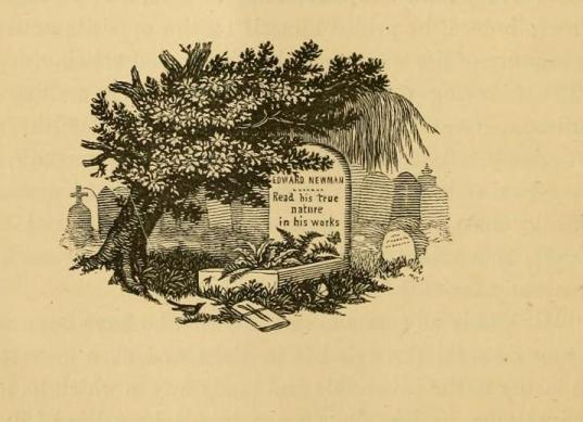 Newman grave