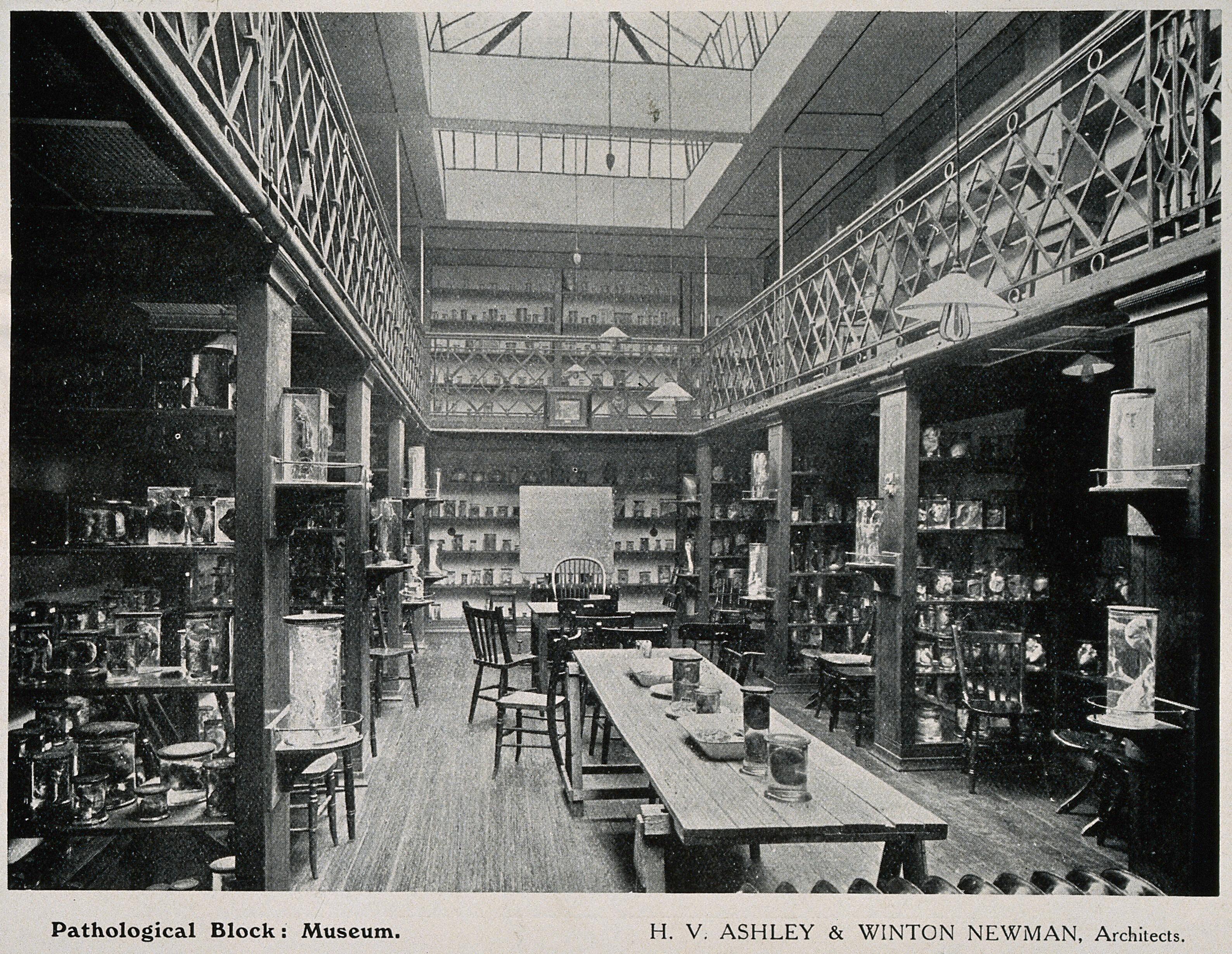 Pathology Museum, Royal Free